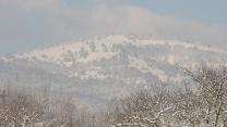 fp2010-12-04-02